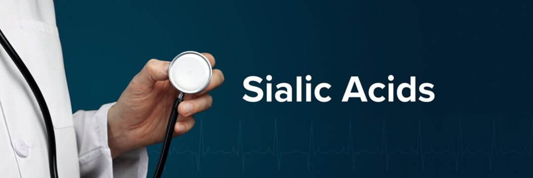 Sialic Acids. Doctor in smock holds stethoscope. The word Sialic Acids is next to it. Symbol of medicine, illness, health