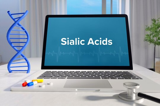 Sialic Acids. Medicine/healthcare. Computer in the office of a surgery. Text on screen. Laptop of a doctor. Science/health