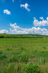 Beautiful countryside panorama landscape with green grass meadow