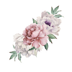Bouquet of peonies, watercolor, can be used as greeting card, invitation card for wedding, birthday and other holiday and summer background.
