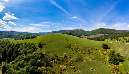 Vue aérienne sur une colline verte avec une forêt et un ciel bleu