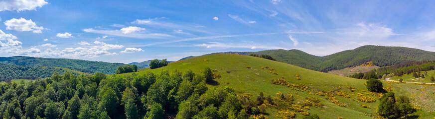 panorama sur une colline verte
