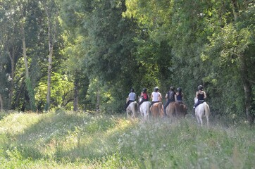 Women and horses, Bretagne, France
