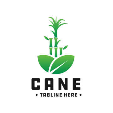 bamboo and cane green logo