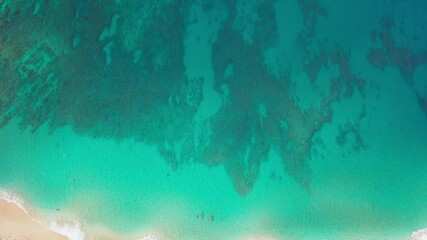 Wall Mural - Tropical beach on Oahu island in Hawaii. Top down view of the perfect sandy beach with coral reef visible through the water