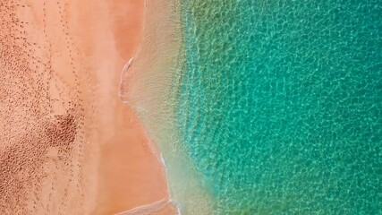 Wall Mural - Tropical beach on Oahu island in Hawaii. Top-down view of the perfect sandy beach with gently rolling waves