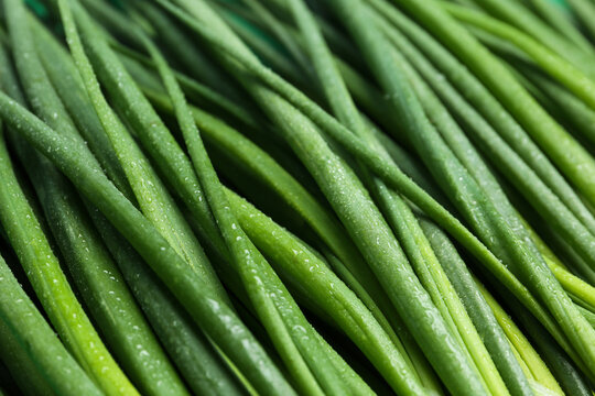 Fresh green spring onions as background, closeup