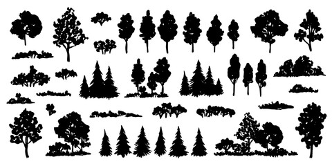 Trees sketch set. Hand drawn graphic forest. Vector illustration of different trees, shrubs and grass isolated on white background