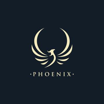 phoenix wing logo animal abstract