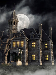 Gothic mansion with an old tree and ivy on the porch at night, with the full moon in the background. 3D render.