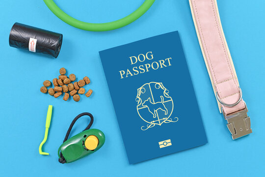 Concept for travelling with dogs showing made up blue dog passport next to pet supplies like collar, tick tweezers, clicker, dog treats or poop bags on blue background