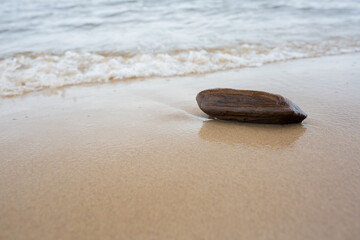 Canvas Prints Stones in Sand City Carnikava, Latvia. Pieces of wood at sea. Travel photo.