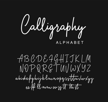 Handwritten calligraphy script font design. Vector illustration.