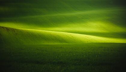 壁紙(ウォールミューラル) - Splendid view on of sunlit wavy fields of agricultural area.