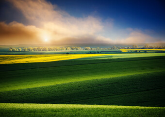 壁紙(ウォールミューラル) - Dramatic view on of sunlit wavy fields of agricultural area at springtime.