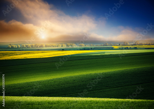Wall mural Dramatic view on of sunlit wavy fields of agricultural area at springtime.