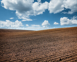 Wall Mural - Picturesque rural area and plowed field on the springtime.