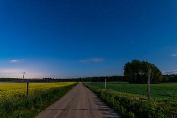 Fototapeta road in the field at sunset