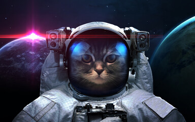 Wall Mural - Cat astronaut in space