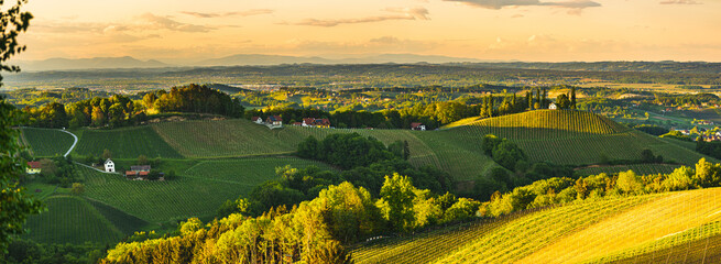 Sunset over South Styria vineyard landscape in Steiermark, Austria.