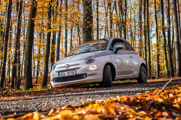 Fiat 500 Collezione on country road in autumn forest