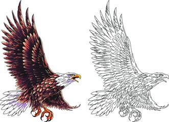 American national eagle in flight. Vector illustration