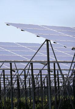 A large solar farm in Queensland, Australia