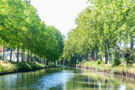 Summer look on Canal du Midi canal in Toulouse, southern Franc