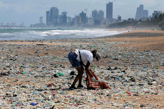 A volunteer collects garbage on the beach as the business city of the country is seen at the background during an event to mark the World Environment Day in Colombo