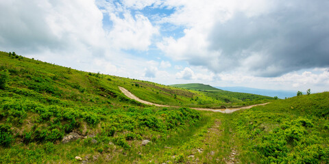 Wall Mural - path through mountain landscape. road through green rolling hills. cloudy weather