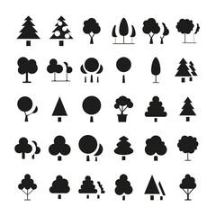 Obraz Picto arbres sapin et nature  - fototapety do salonu