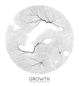 Vector generative branch growth pattern. Round texture. Lichen like organic structure with veins. Monocrome square biological net of vessels.