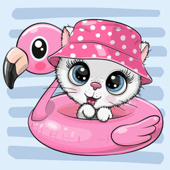 Kitty in panama hat swimming on pool ring inflatable flamingo