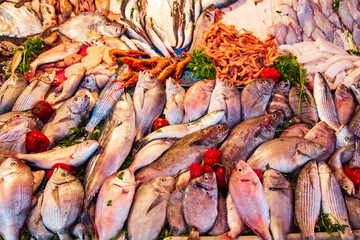 Fish Market in Essaouira. Fresh and healthy food.