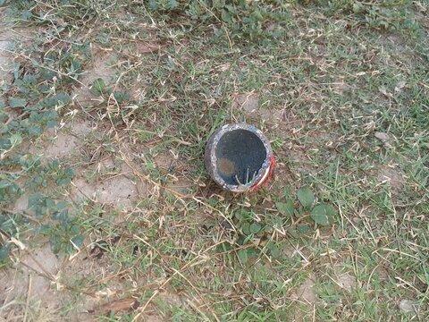 cricket ball on the grass
