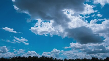 Papier Peint - voluminous summer clouds time lapse at pine forest