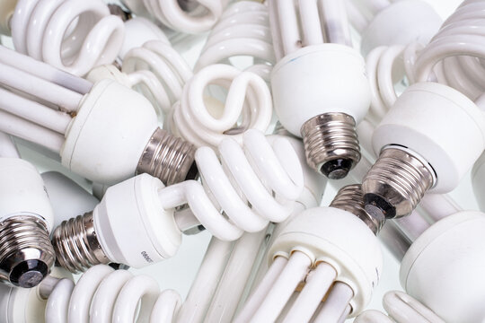Collection Of Discarded Light Bulbs At Recycling Event. Old burnt light bulbs