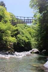 Photo sur Aluminium Rivière de la forêt river in the forest