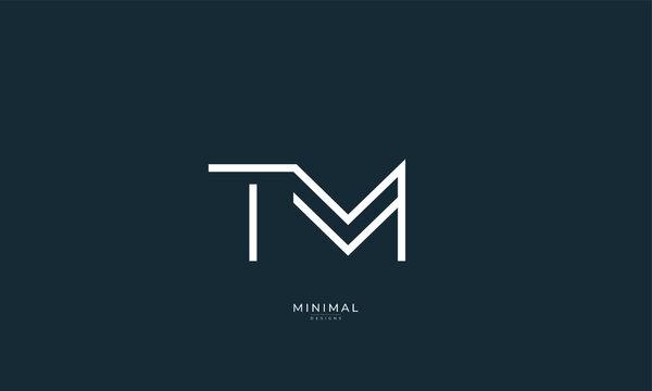 Alphabet letters icon logo TM
