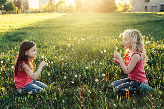 Cute adorable Caucasian girls blowing dandelions. Kiids sitting in grass on meadow. Outdoors fun summer seasonal children activity. Friends having fun together. Happy childhood lifestyle.