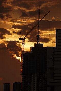 Sunset view with the silhouette of crane