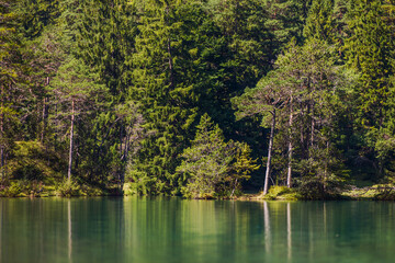 Wall Mural - Bavarian Scenic Lake and Forest Line Germany