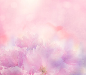 Poster Floral Floral background with pink flowers