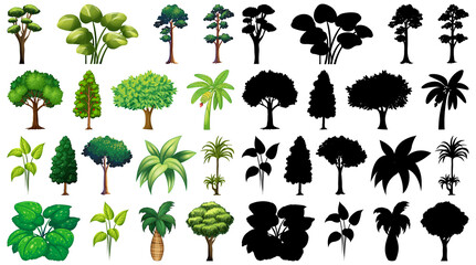 Set of plant and tree with its silhouette