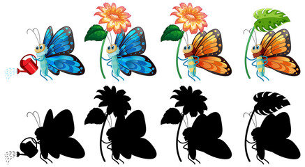 Set of butterfly cartoon and its silhouette
