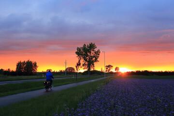 Kolorowy zachód słońca nad polami i drogą z rowerzystą na ścieżce rwerowej wieczorem.