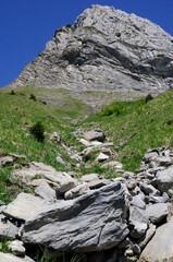 éboulement de rochers sous le pic du lion d'argentière en montagne suisse.
