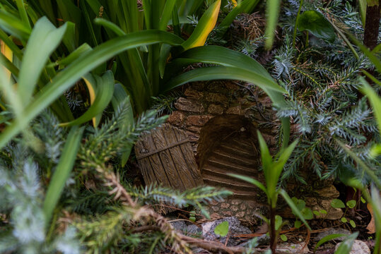 A hidden door in the garden