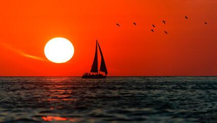 Fototapeten Rot Sailboat Sunset Sailing Birds