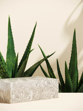 Minimal cosmetic background for product presentation. Stone podium and aloe vera plant with shadow of leaf. 3d render illustration.